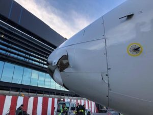 Damaged plane nose lacks blood or feathers